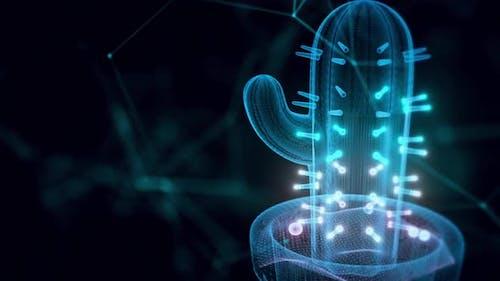 Cactus Hologram Close Up Hd