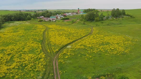 Thumbnail for Green Open Field with Yellow Plants and Small Village