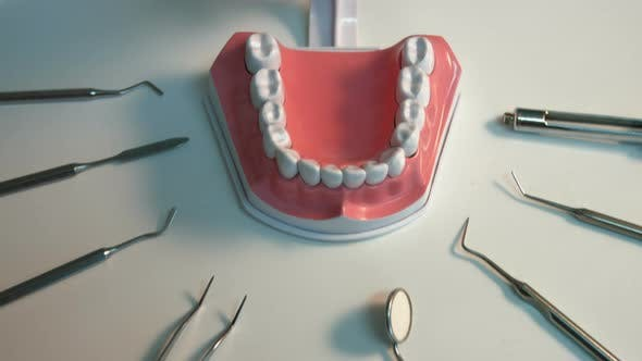 Many Dental Instruments and Jaw.