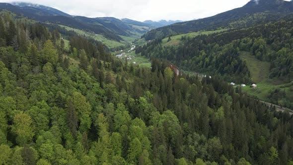 Thumbnail for Ukraine, Carpathians: Forest Landscape. Aerial View.