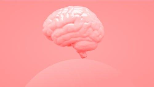 Melting Brain 02