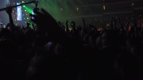 Excited audience dancing at the concert