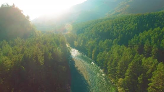Thumbnail for Low Altitude Flight Over Fresh Fast Mountain River with Rocks at Sunny Summer Morning