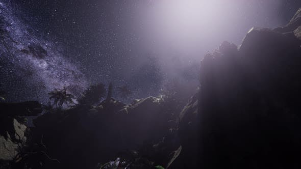 Thumbnail for Stars Trails Over Sandstone Canyon Walls