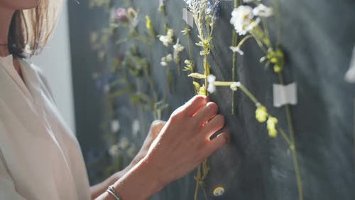 Female Designer Decorating Wall with Meadow Flowers