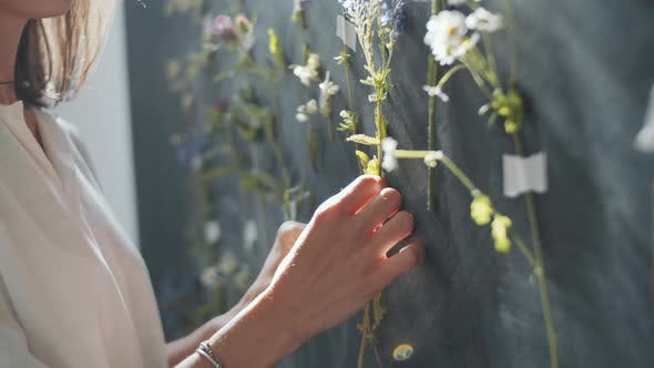 Thumbnail for Female Designer Decorating Wall with Meadow Flowers