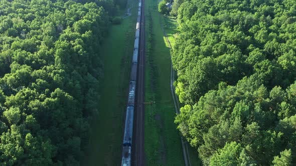 Aerial View Of Train In Forest