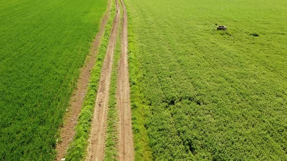 Thumbnail for Aerial View of Road Through Field