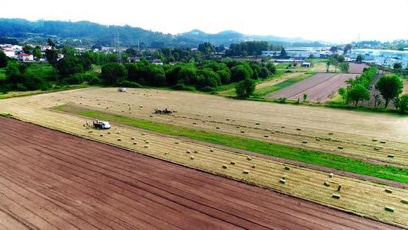 Thumbnail for Agricultural Farm