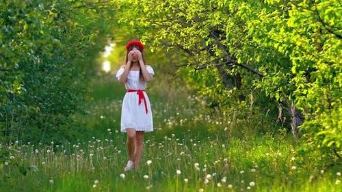 Walk in a Flower Meadow a Girl Walks Through a Meadow with White Dandelions