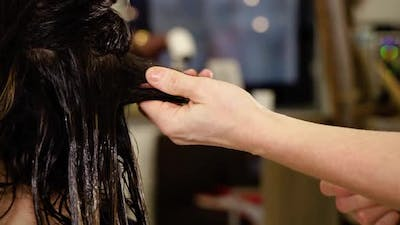 Hairdresser Spreads Lotion on Hair Lock in Beauty Salon