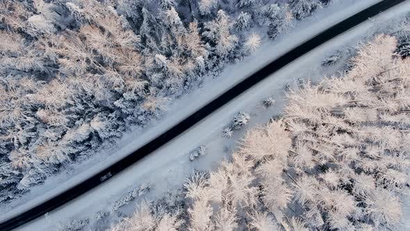 Thumbnail for Car Drives Along the Road in Winter in the Middle of a Snowy Forest Aerial View