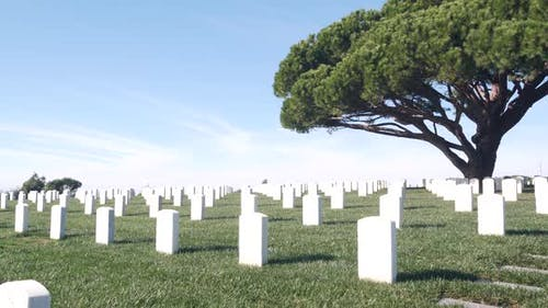 Tombstones on American Military National Memorial Cemetery Graveyard in USA