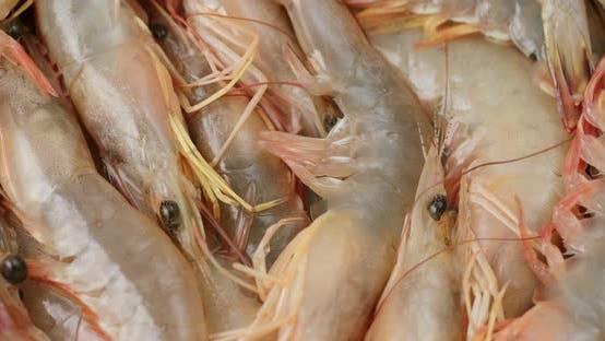 Thumbnail for Fresh uncooked shrimp