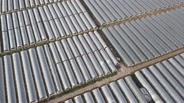 Thumbnail for Aerial Drone Footage of Greenhouses
