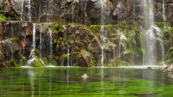 Thumbnail for Scenic Nature of Beautiful Waterfall and Pool of Fresh Water with Green Seaplant