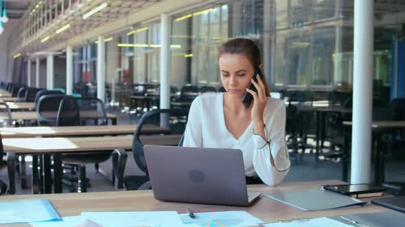 Thumbnail for Portrait Professional Employee Has Phone Conversation
