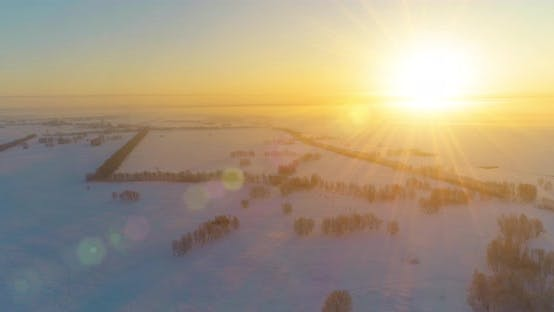 Aerial Drone View of Cold Winter Landscape with Arctic Field, Trees Covered with Frost Snow and