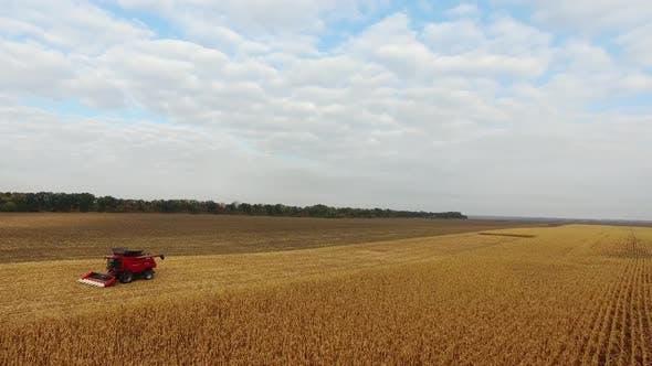 Thumbnail for Riesige rote Mähdrescher im Feld Mais in einem schönen blauen sonnigen Tag
