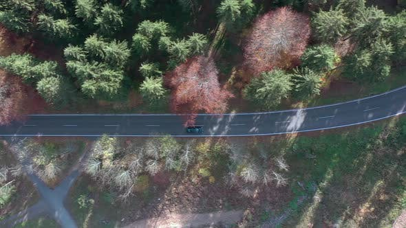 Thumbnail for Bird's Eye View of a Car On a Journey Through a Forest Road