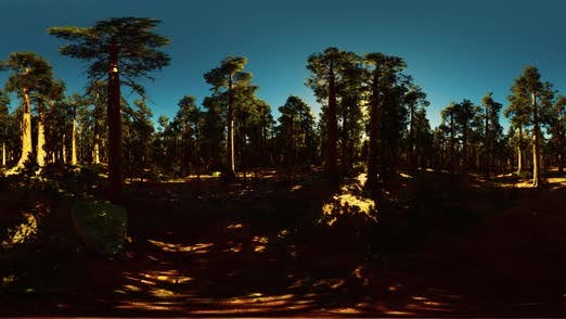 Thumbnail for VR360 in Sequoia National Park