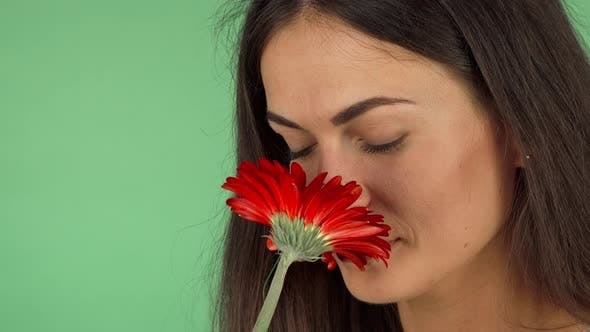 Cover Image for Attractive Cheerful Woman Smelling a Flower and Smiling