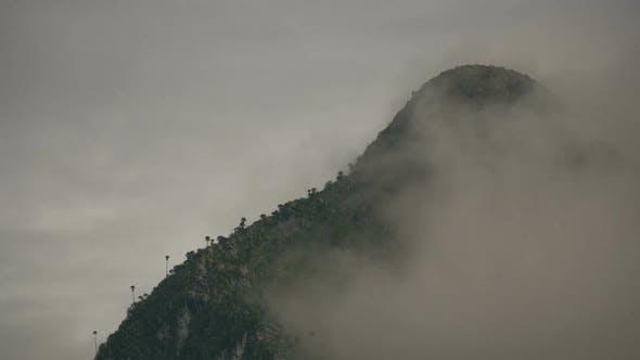 Thumbnail for Fog Moving On Mountain Peak