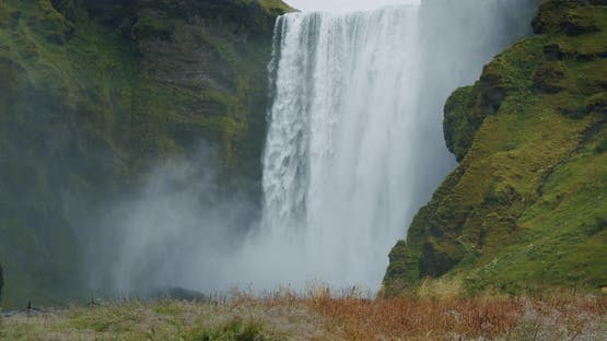 Epic Skogafoss Waterfall with Foliage in Foreground Iceland
