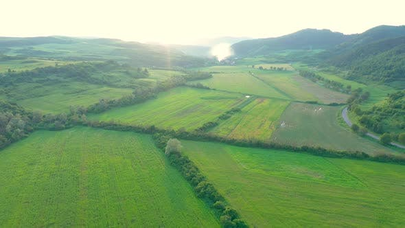 Thumbnail for Aerial View of Countryside Vibrant Green Hills