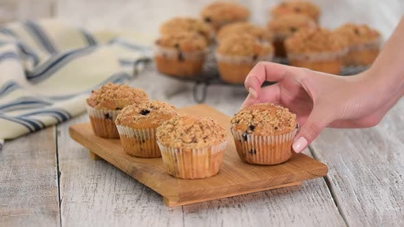 Cover Image for Homemade Blueberry Muffins for Breakfast.