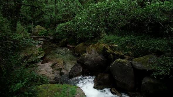 Thumbnail for Amazing Rainforest Jungle Waterfall
