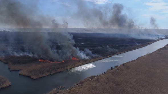 Nature Calamity, Large Flames Fast Moving By Dry Meadow with Black Smoke Going Up To Heaven Near