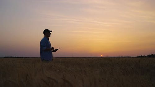 Silhouette of Farmer Standing with Tablet in Field