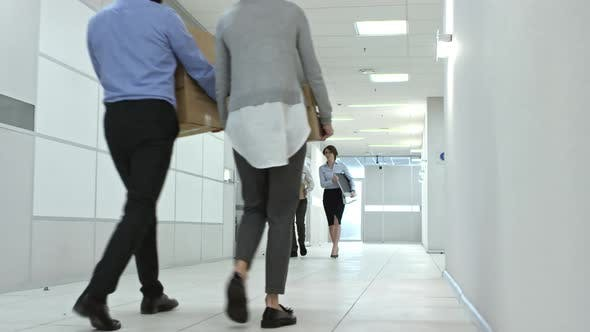 Thumbnail for Coworkers Carrying Boxes to New Office