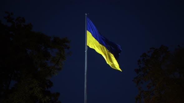 Thumbnail for Ukrainian Flag On A Wind