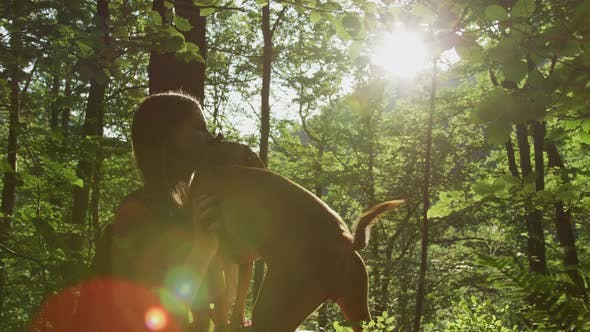 Thumbnail for Girl with dog on a sunny day in the forest