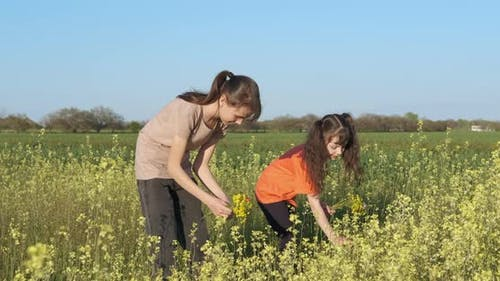 Children Pick Flowers