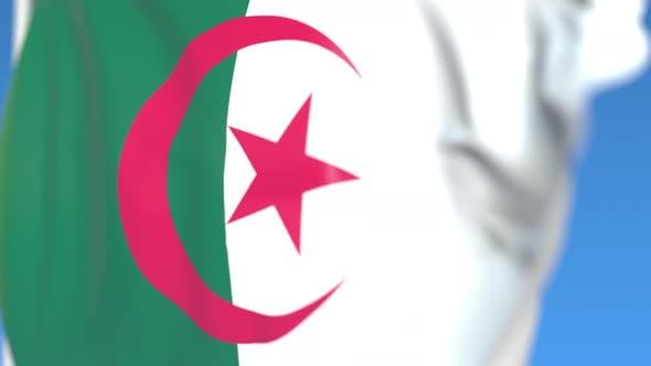 Thumbnail for Flying National Flag of Algeria