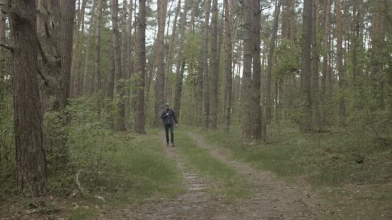 Thumbnail for Backpacked Traveler in the Forest