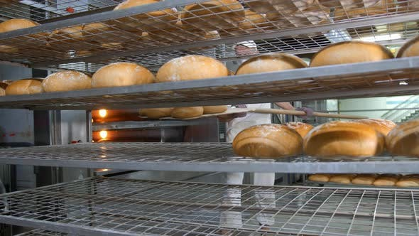 Thumbnail for Chef Removes Freshly Baked Bakery Products From the Oven. Baked Bread Is Removed From the Oven in a