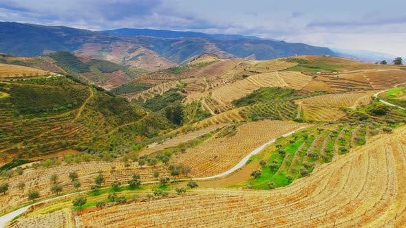 Thumbnail for Flight Douro Valley Vineyards in Portugal