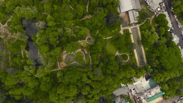 Thumbnail for Pharmaceutical Garden, Botanical Garden of Moscow State University