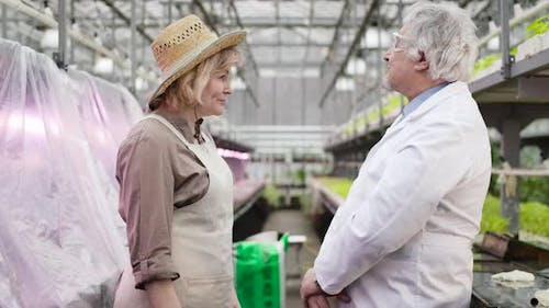 Side View Portrait of Satisfied Agronomist Shaking Hand of Scientist in Glasshouse. Senior Caucasian