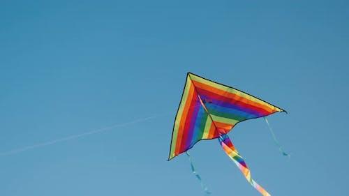 Kite Soars in the Blue Sky