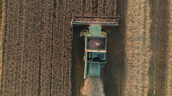 Thumbnail for Combine Harvester Harvests In The Field