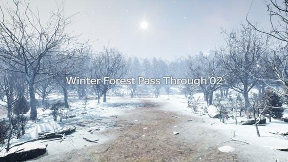 Winter Forest Pass Through 4K 02