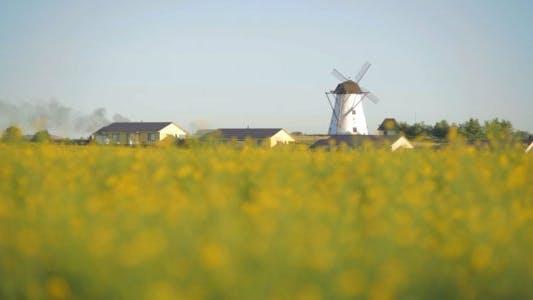 Zoom into Windmill on Yellow Rape Field