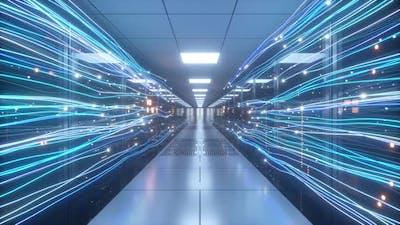 Digital Information Flows Through the Network