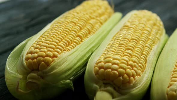 Thumbnail for Ripe Corn Ears with Leaves