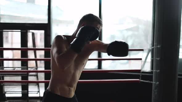 Thumbnail for Boxer Man Fulfills Blows